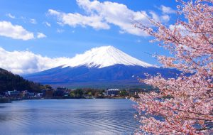 HN – OSAKA – NAGOYA – KYOTO – TOKYO – HN